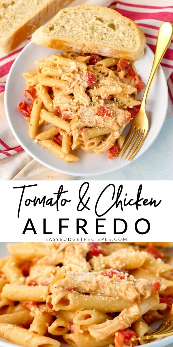 This Tomato Chicken Alfredo recipe is easy to make and just the comfort food your family is craving. It serves 6 people and costs just $8.56 to make and $1.43 per serving.  via @easybudgetrecipes