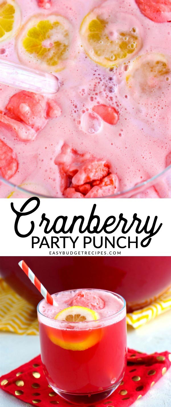 This Cranberry Party Punch is perfect for any Fall and Winter get together. It's easy, costs just $8.67 to make, and serves 20 people! via @easybudgetrecipes