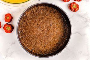 The gingersnap crumb mixture on the bottom of a springform pan.
