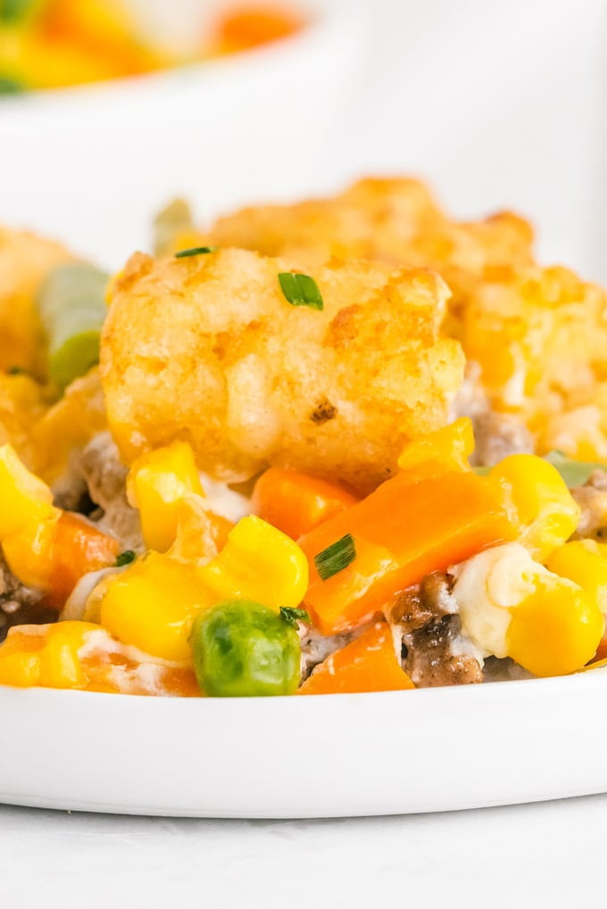 A close up picture of tater tot casserole on a white plate.