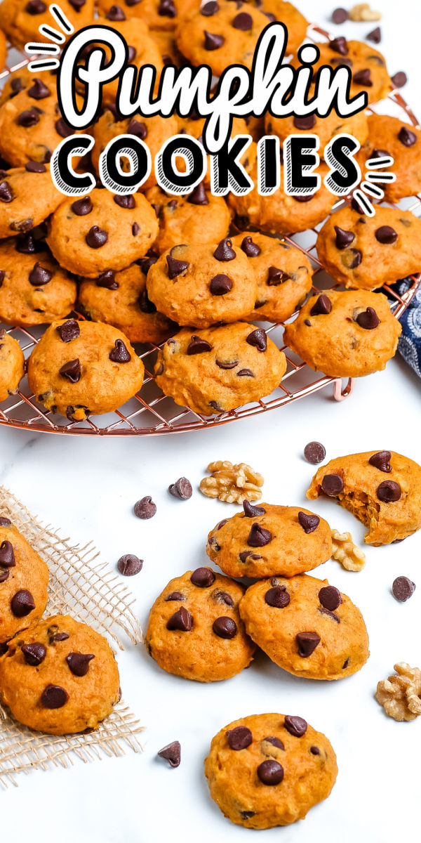 These Soft Pumpkin Chocolate Chip Cookies are loaded with the pumpkin flavor you love plus a little bit of added crunch from chopped walnuts.  via @easybudgetrecipes