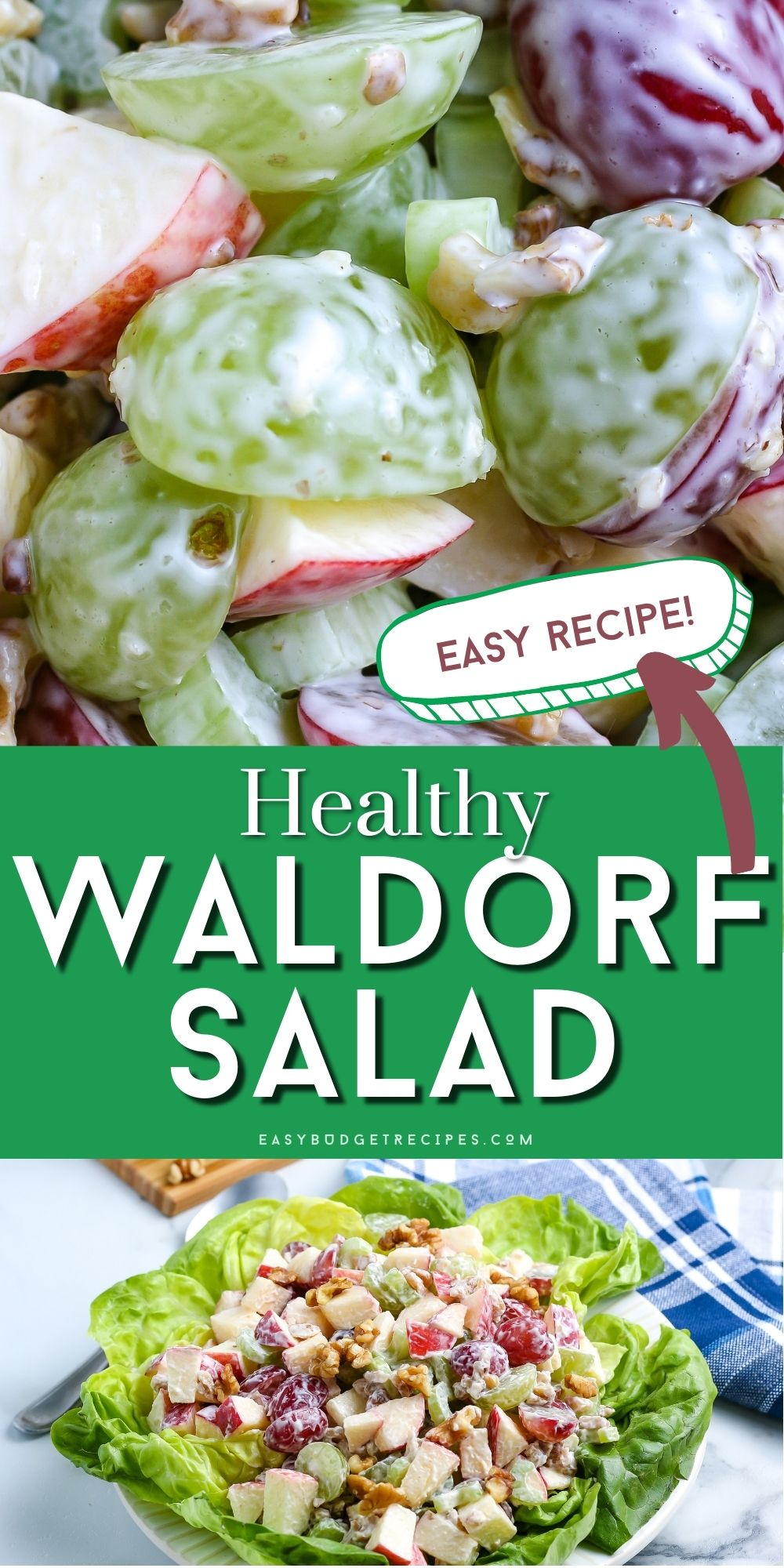 This Healthy Waldorf Salad recipe is easy to make and a tasty side dish for Thanksgiving, Christmas, or any meal. We also love adding chicken to it for a healthy lunch.  via @easybudgetrecipes
