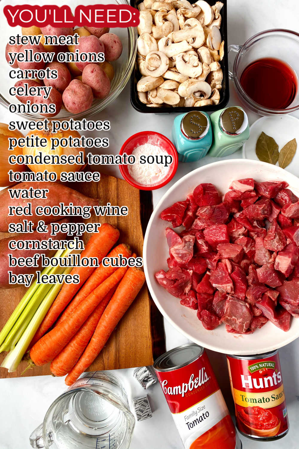 An overhead picture of all of the ingredients needed to make this Gone All Day Stew recipe.