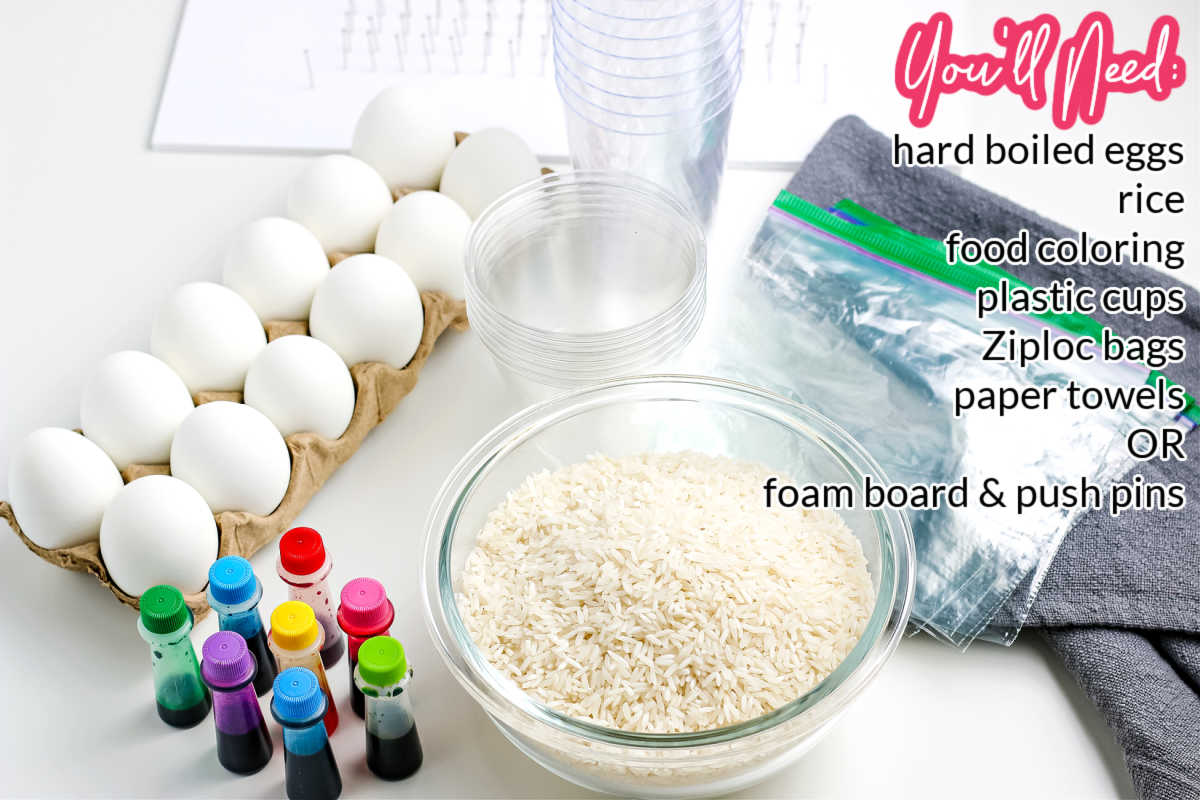 All of the ingredients and equipment needed to make rice-dyed Easter eggs.